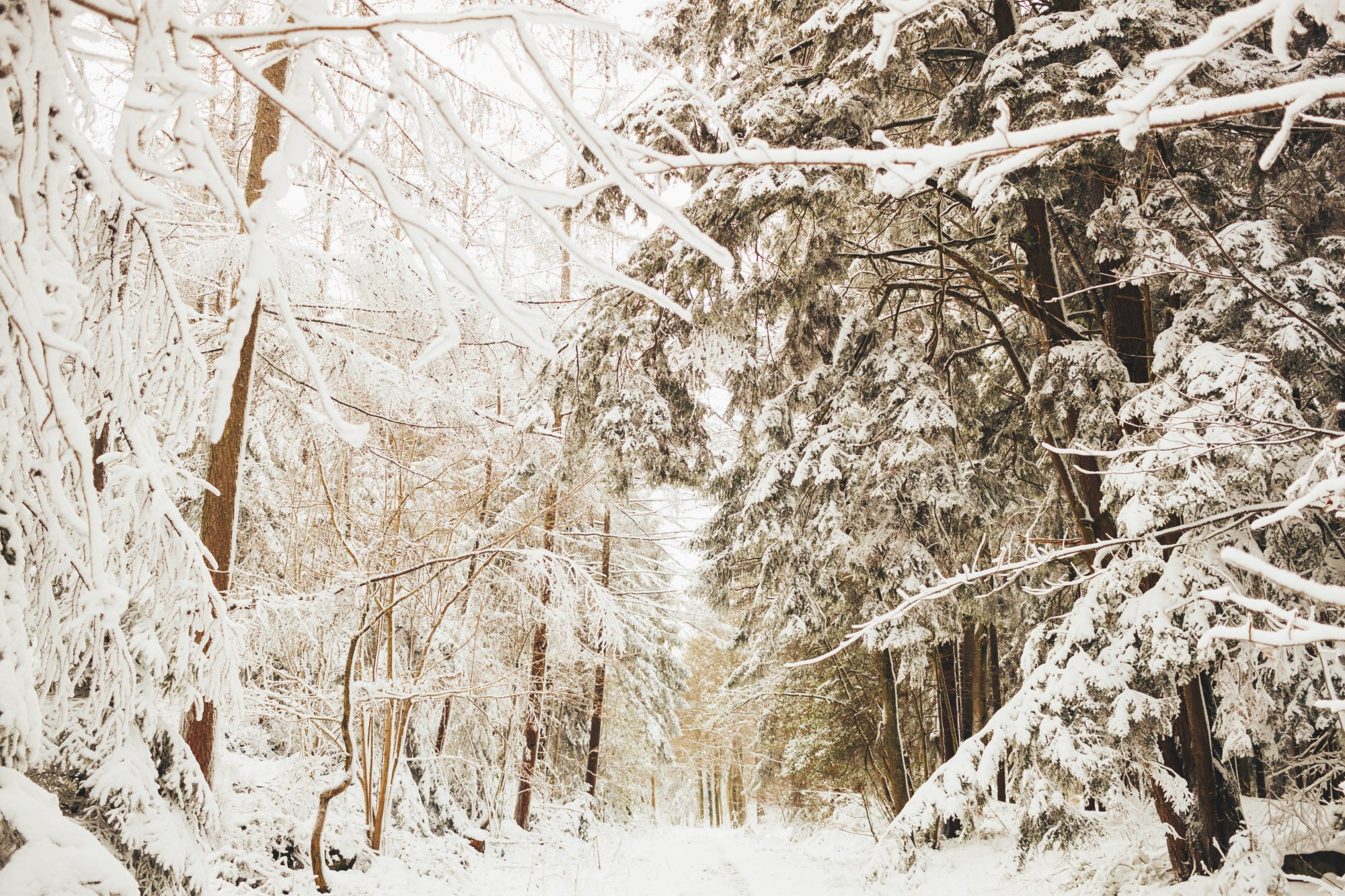 Snow in Spa
