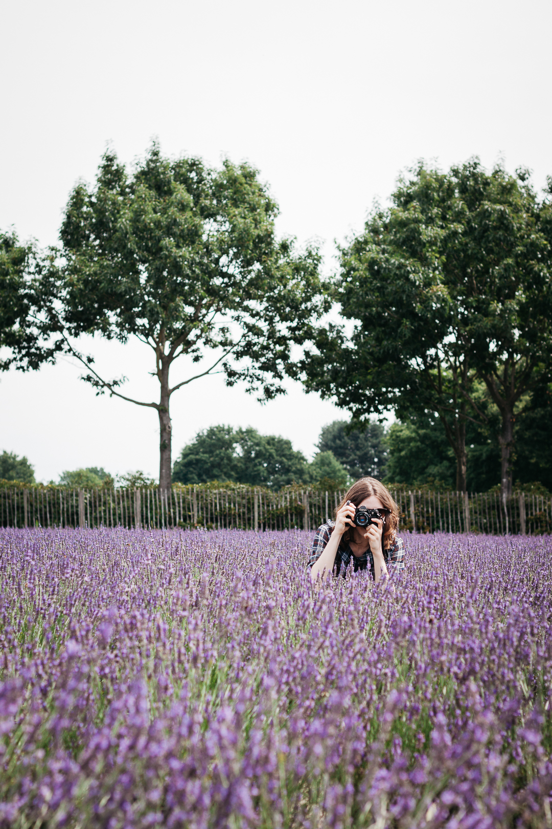 Smell the lavender