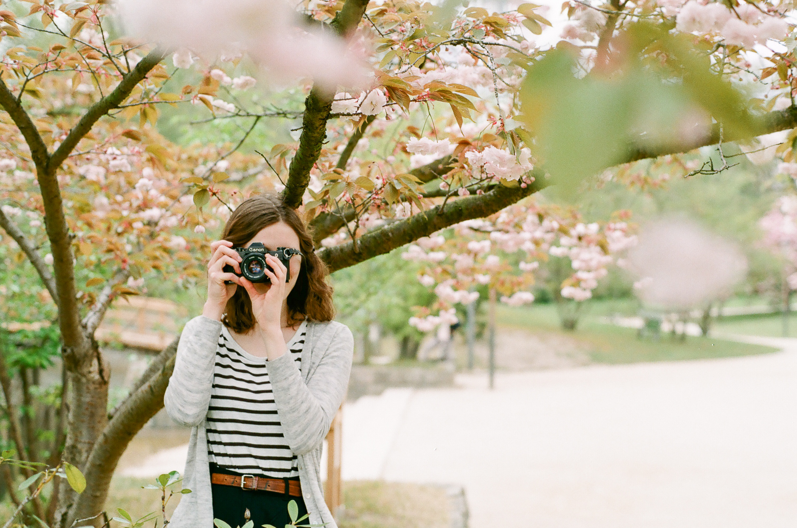 Spring through an analog lens
