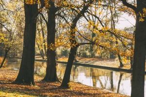 161125 Bruges 002