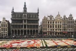 Flower Carpet, Brussels
