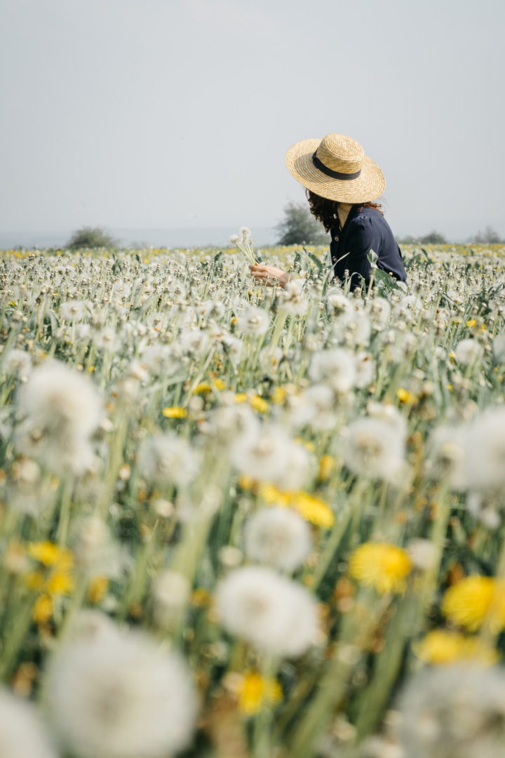 Girl wearing a hat in a dandelion meadow during May