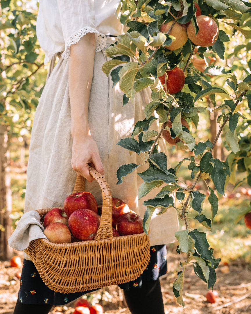 Girl carrying a basket of apples