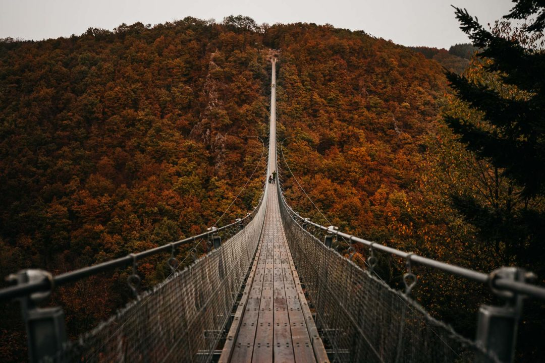 Geierlay bridge during autumn