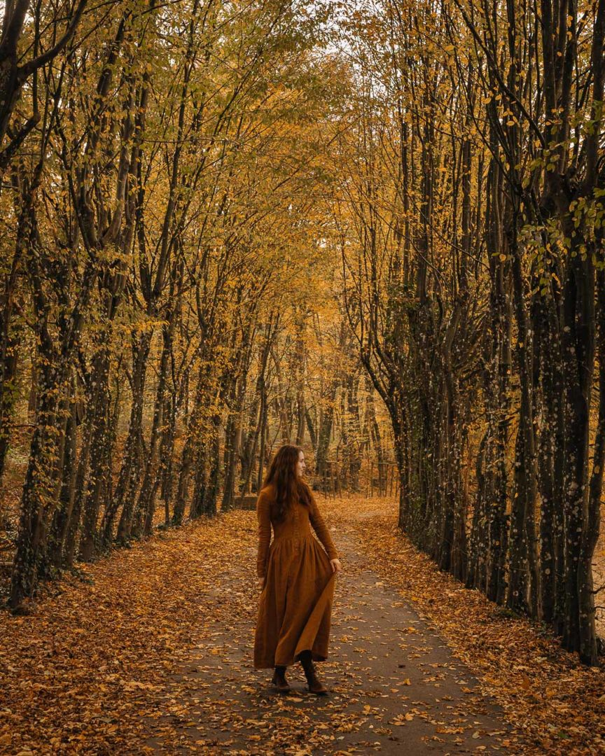 Stories of autumn, a woman in a dress under a tree tunnel during autumn.