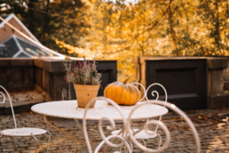 Flowerpot and pumpkin on a vintage table with golden leaves in the background